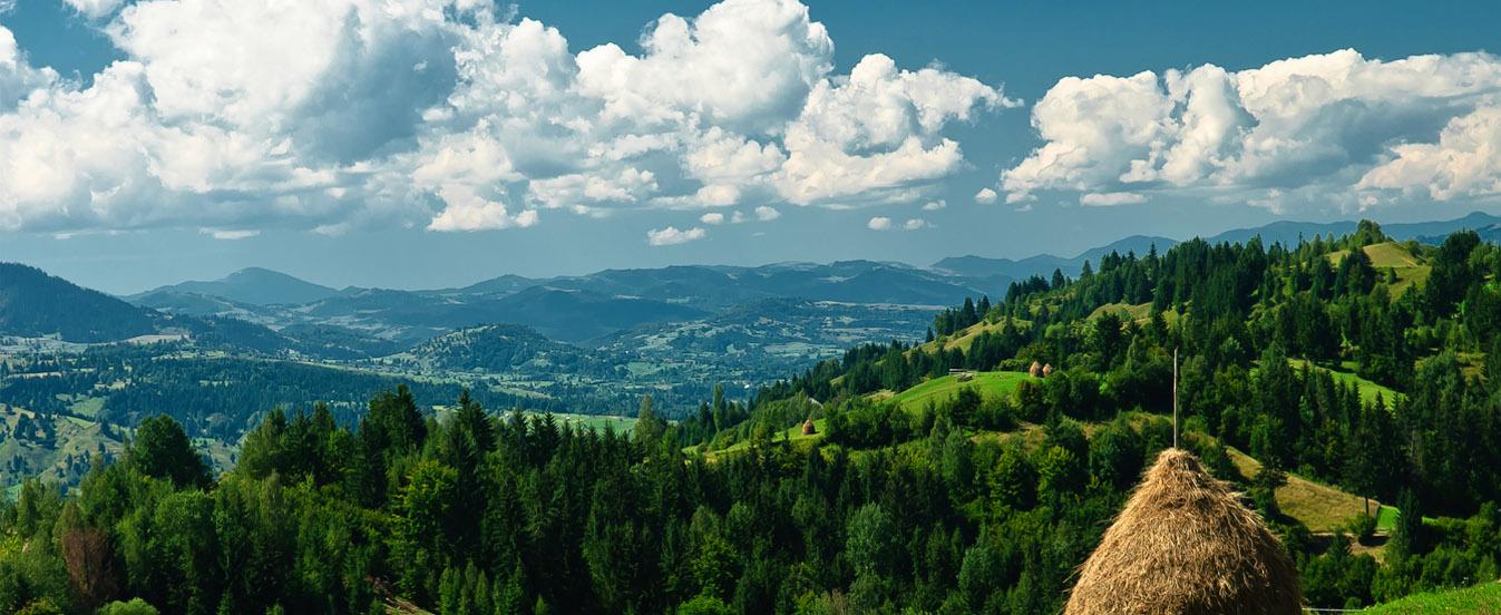 Borsa Turism Voor Een Onvergetelijk Avontuur In Roemeni 235